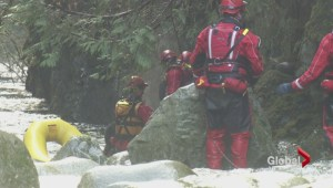 Stranded dogs are rescued from Lynn Creek