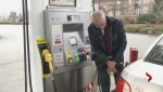 Gas prices to drop: analysts