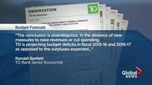 Harper gets budget surplus reality check