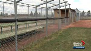 Edmonton sports fields could open before scheduled date