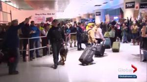 Canadian green card holders debate travel to the U.S.