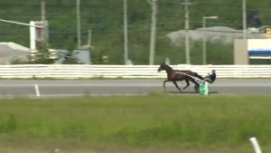 Harness racing season set to begin, but under pressure