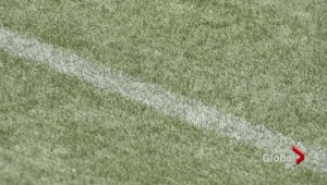 2015 Women's World Cup will be played on artificial turf