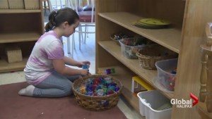 Several NS daycares at risk of closing due to new rules: association