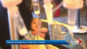 Yemen cholera outbreak affecting more than 200,000 people