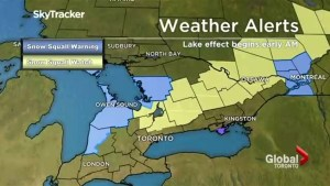 Snow squall Warning and Watches in effect for portions of central, eastern Ontario