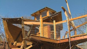 Toronto boat-shaped treehouse allowed to stay up for now