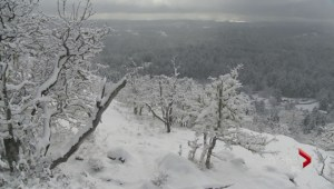 Vancouver Island hit by heavy snowfall