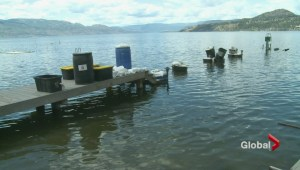 Kelowna mayor wades into dock controversy