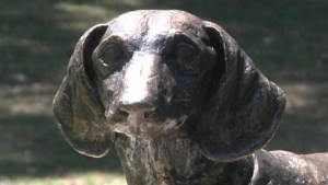 Raw footage of hero dog commemorated with statue in Serbia