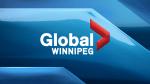 Fire crews battle blaze in Winnipeg's Island Lakes area