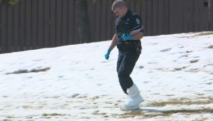 Police investigate after body found in green space in north Edmonton