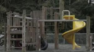 BCAA Play Here: Galiano Community School
