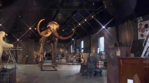 Ice Age mammoth set to be auctioned off