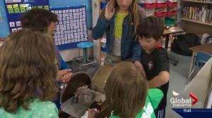 Belgravia School celebrates 60 years
