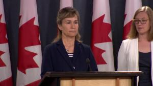 What can Canada do to thwart cyberattacks against democratic processes?