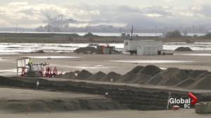 Development plans in Tsawwassen raise concerns about gridlock