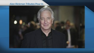 Tributes pour in for actor Alan Rickman