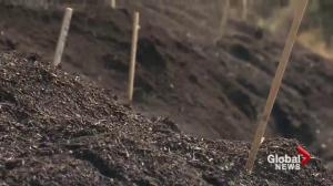 Victoria relaxes contaminated soil rules for the province
