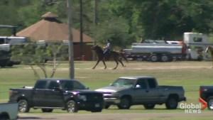 Paul Ryan tours US border with Mexico on horseback