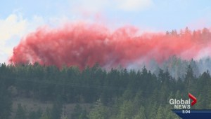 Watchdog criticizes BC government for not doing more to reduce wildfire risks