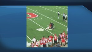 Cellphone footage shows Ohio State Coach Tackling Fan