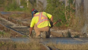 Maintenace crews fix unsafe rails near Lake Shore Blvd.
