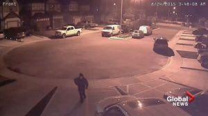 Home surveillance video captures possible car prowler in Calgary's southeast