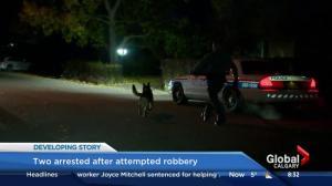 Police arrest 2 men in home invasion