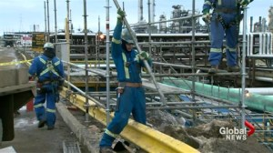 Low oil not deterring local workers