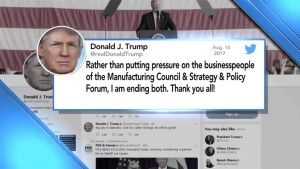 Trump disbands two economic councils after business leaders flee amid Charlottesville response controversy