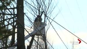 NB Power preparing for winter