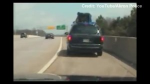 Footage of van with caged puppies on rooftop pulled over