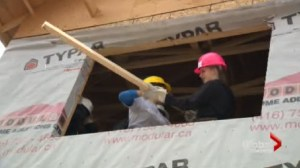 Minna Rhee,  Peter Kim  and Allison Vuchnich volunteer for Habitat for Humanity
