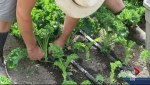 Okanagan farmer cashes in