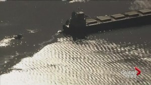 Environmental emergency in English Bay after oil spill