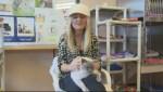 Adopt a Pet: Feb 16