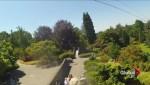 Controversial Queen Elizabeth Park zipline