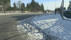 Snow and freezing temperatures leave many housebound