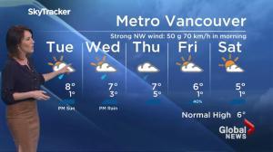 BC Evening Weather Forecast: Dec 19