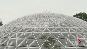 New Zipline for Queen Elizabeth Park