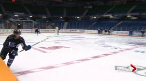 Saint John Sea Dogs on-ice success also a score for local business