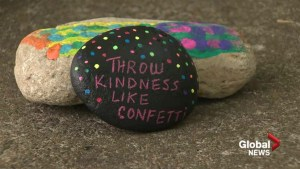 'Spread love not hate': Moncton group hides rocks with messages of love & acceptance