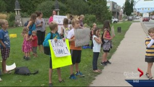 Premier asks teachers to end job action and resume negotiations