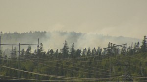 Wildfire near Halifax contained, no reported injuries