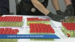 Steroid smuggling ring busted