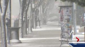 Strong winds, snow pound the Edmonton region