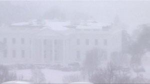 Blizzard dumps snow across eastern U.S.