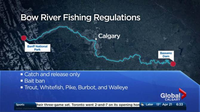Fishing regulations change at bow river from banff to for California fishing season 2017