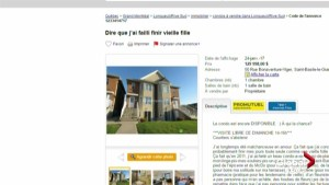 Montrealer sells condo with unique 'cat lady' Kijiji ad